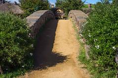 Bridge to Green Dragon (Michael Ranzau) Tags: bridge newzealand green dragon lordoftherings hobbiton