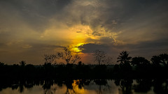 Sunrise (Mijan Rashid) Tags: travel orange sun tree yellow sunrise dhaka bangladesh travelphotography