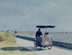 Caf, th...glaces, boissons. (France-) Tags: man france texture tricycle homme paree 733 bassindarcachon vendeur