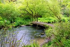 2 (Marie G Flynn) Tags: river stream