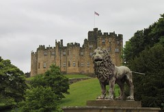 24//52 Percy Lion at Alnwick Castle (NikkiNakkiNoo365) Tags: castle canon jack flag union lion harry potter alnwick northumberland 24 weeks 52 percy 2016 1100d