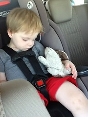 "Paul Sleeps in the Car with B the Bunny • <a style=""font-size:0.8em;"" href=""http://www.flickr.com/photos/109120354@N07/27780106571/"" target=""_blank"">View on Flickr</a>"
