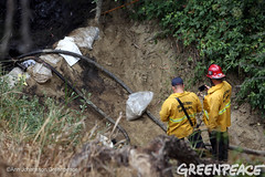 Trying to Clean Up Pipeline Crude (Greenpeace USA 2016) Tags: oil spill pipeline fossilfuel ventura california pollution cleanup crude ca usa