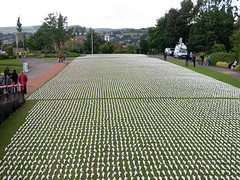 193/366 19240 Shrouds of the Somme - 366 Project 2 - 2016 (dorsetpeach) Tags: memorial devon exeter shroud 365 remembrance somme 2016 366 commemorate 19240 northernhaygardens 1stjuly1916 aphotoadayforayear 366project second365project shroudsofhtesomme