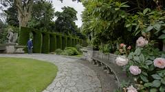 HBM from Mount Srewart (Wendy:) Tags: hbm mtstewart nationaltrust gardens bench seat stone roses hedges statue curvedseat