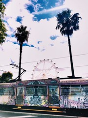 Stars of Melbourne (e.bonomini) Tags: sky clouds palms star tram australia melbourne docklands