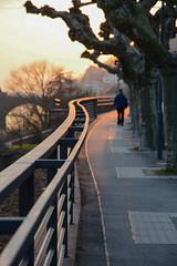 Golden lines    *explore* (sarah_presh) Tags: light sunset sun lines sunshine fence germany glow bokeh will lateafternoon heidelburg nikond7100