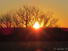 March 14, 2015 - A beautiful sunrise at Cherry Creek State Park. (Anika H)