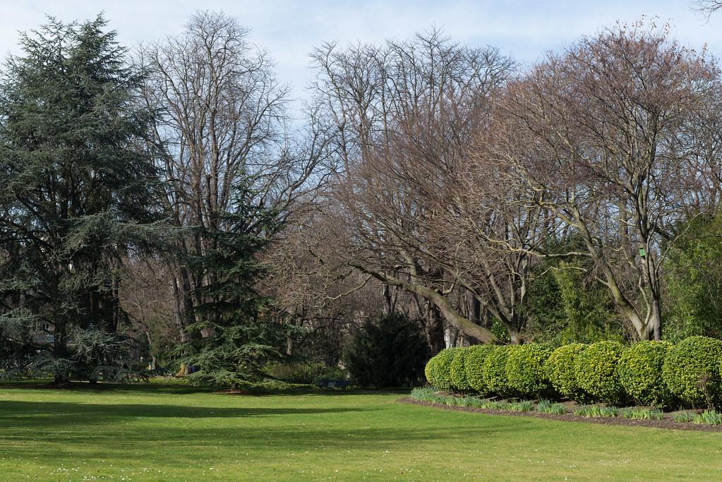 Spring in Jardin du Luxembourg