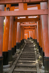 Escaleras (_Galle_) Tags: city miguel japan angel canon photography japanese photo kyoto asia foto photographer inari photos mark iii hill capital ciudad mount fotos  5d nippon monte fotografia kioto galle prefecture kansai region  torii japon japones jinja fotgrafo nihon japoneses fotografo toris fushimi fotografa japn gallego honshu  kyto  toriis inaritaisha  prefectura japanesse a kytoshi fushimiku nihonkoku nipponkoku sintoismo kyotoshi sintoista bunsha
