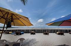 Brazil - Tamandar (Nailton Barbosa) Tags: brazil praia brasil de mar nikon bresil brasilien pe litoral pernambuco brasile umbrela oceano nordeste brsil carneiros tamandar d80