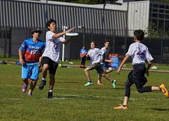 rsellers_160515_jrmeat_0042 (oracle_ron) Tags: santacruz youth tournament alameda middleschool ucsantacruz bada ultimatedisc jrmeat statestournament cabayareadiscassociation