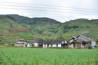 dieng plateau - java - indonesie 1