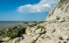 The Coast Is Clear (Johann Glaes) Tags: sea mer france rock wave cap cote pas vague nez seashore blanc rocher calais nord littoral opale