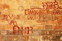 IMG_8667Ax (kanizfotolio) Tags: dog brick art wall canon lens eos sadness spain europe paint beggar spanish granada kits stray 500d granadacathedral