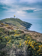 Blue at Strumble head (emmadavidso) Tags: blue cloud lighthouse strumblehead pembrokeshire headland gorse 21042016