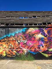 Red Hill Skate Arena 1, Brisbane (stephenk1977) Tags: street red art abandoned graffiti hill australia brisbane arena skate qld queensland wwf treas preset vsco iphone6 drapl