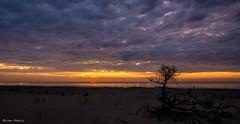 Atlantic Sunrise (b88harris) Tags: ocean vacation sun sunlight seascape beach sunshine sunrise gold nikon exposure waves ngc sigma atlantic 1750mm d7200