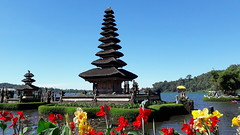 Ulun Dhanu Lake Temple (stardex) Tags: ulundanu lake temple culture heritage architecture building flower plant bali indonesia