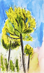 Ein Karem, Jerusalem, Israel - pen and watercolour sketch (novarex1) Tags: art drawing watercolour watercolor sketch urban sketching trees ein karem jerusalem israel