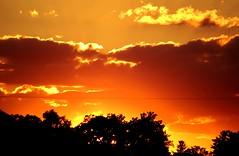 50 (_T_Willi_95) Tags: sunset summer usa lake nature beautiful night canon outdoors boat americanflag edits photograghy lakeorion canont3i rebelt3i