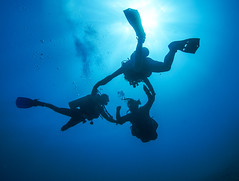 Deptherapy (KnyazevDA) Tags: sea underwater wheelchair scuba diving disabled diver padi undersea handicapped amputee disability