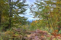 far away (Jules Marco) Tags: mountain nature berg canon austria sterreich natur krnten carinthia hdr highdynamicrange eos600d tamron18270mmf3563diiivcpzd