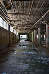 'Dixie Cup Factory' (miranda.valenti12) Tags: dixie cup factory abandoned building ceiling walls windows window light sunlight creepy leading lines perspective bethlehem pa trashed