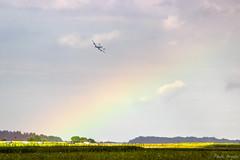 A Constellation Sight (PauloHenrique Pereira) Tags: constellation connie lockheed l1049 classi plane landing rainbow belgium florennes air force days breitling