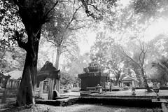 Palembang (21) (M Arief Wibowo) Tags: museum river temple bukit palembang musi candi tinggi astano karanganyar kedaton sriwijaya gedong srivijaya siguntang gumpung
