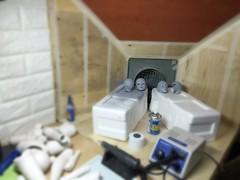 N401 N408 Head (bimong11) Tags: art doll head surface bjd treatment bimong n408 n401