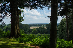 Framed landscape_1 (Graham Dash) Tags: painshillpark painshill landscapes firwalk northdowns cobham surrey 2016pad