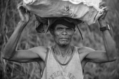 woodsman (Stitch) Tags: portrait man firewood countryside dirtroad bukidnon mindanao philippines weekly helios