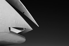 into the jaws (fotosintetica) Tags: architecture calatrava valencia cac ciutat arts ciencies artes ciencias ciudad bw black white canon 650d t4i