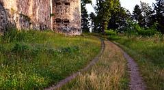 Der Weg ist das Ziel (MH *) Tags: morgensonne burg gras trees baum weg route grn green way grass d7200 sigma30mmart emmendingen hochburg windenreute wanderweg
