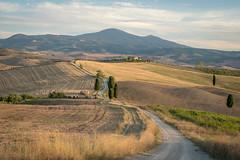 Through the Fields (marco soraperra) Tags: landscape hills field grass street italy tuscany valdorcia pienza sky clouds tree trees green verde yellow nikon nikkor