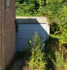 The Driveway Less Travelled (Chrissie L - doesn't do Photoshop) Tags: nikond700 medway kent gb capturenx2 house driveway overgrown