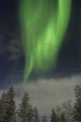 Green Lightfalls (AliJG) Tags: winter finland lights europe lapland levi northern auroraborealis photographyworkshop photoquestadventures goldencrowniglut
