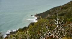 Parco Regionale della Maremma (msimofree1) Tags: parco italia mare workshop toscana grosseto paesaggio maremma regionale naturale uccellina macchiamediterranea nikonschool pixcube