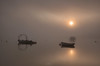 STILLNESS (Mark John Nepomuceno) Tags: mist fog sunrise suffolk nikon riverdeben uklandscape