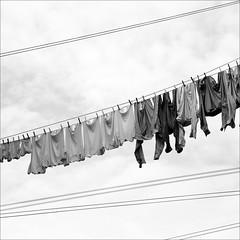 laundry bw