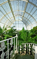 Greenhouse (Serge Freeman) Tags: uk england plants kewgardens london stairs vintage palms wideangle arches symmetry greenhouse glassceiling vaults
