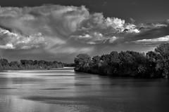 Sacramento River Delta (Mr_Flugel) Tags: california sky blackandwhite cloud water monochrome clouds river landscape delta sacramentoriver