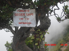 "Pengembaraan Sakuntala ank 26 Merbabu & Merapi 2014 • <a style=""font-size:0.8em;"" href=""http://www.flickr.com/photos/24767572@N00/27163245485/"" target=""_blank"">View on Flickr</a>"
