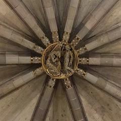 155 / 366 (lufegu) Tags: design pattern ceiling architcture vault fullframe ornate vaultedceiling geometricshape lowangleview ribbedroof directrizbelow diminishingperspectiva ribbbedvalu