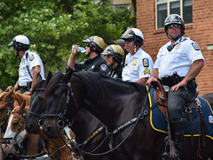 Mounted Patrol (tim.perdue) Tags: comfest 2016 community festival columbus ohio goodale park outdoor summer party short north victorian village downtown urban city mounted patrol columbues police department cpd horse equine