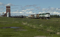 Cadillac Stop (Trevor Sokolan) Tags: railroad canada train tank diesel grain scenic rail railway trains canadian locomotive sk prairie saskatchewan prairies railfan trainspotting grainelevator sentinel alco mlw railfanning wheatking m420