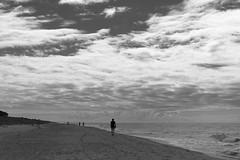 L1021357 (Sigfrid Lundberg) Tags: people seashore sweden skne sunny clouds sea woman man balticsea ystad sandhammaren lderup