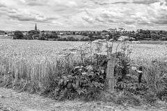 Landschap in zwart-wit (aj.lindeboom) Tags: