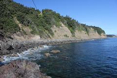 Fishing Rock, Raoul Island (cathm2) Tags: newzealand kermadecs raoul island coast shore travel sea water nature rocks
